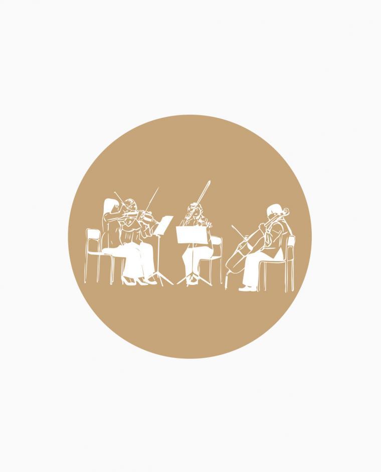 Aperitivo/Taglio Torta - Quartetto d'Archi