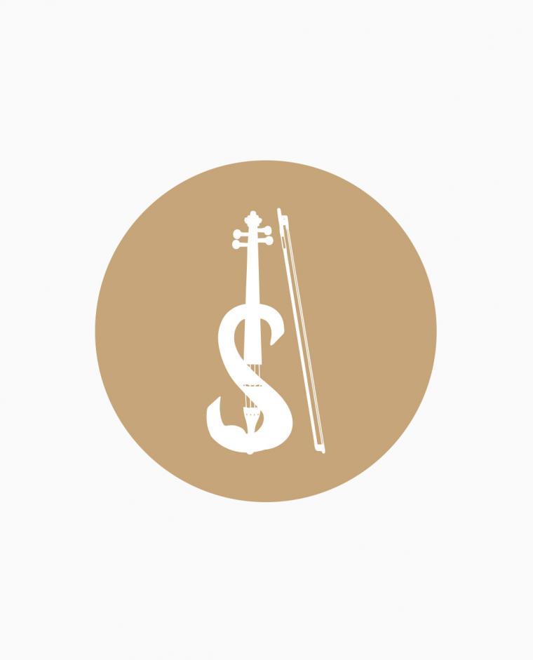 Rito Religioso/Civile - Violino elettrico