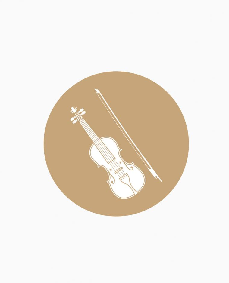 Aperitivo/Taglio Torta - violino classico